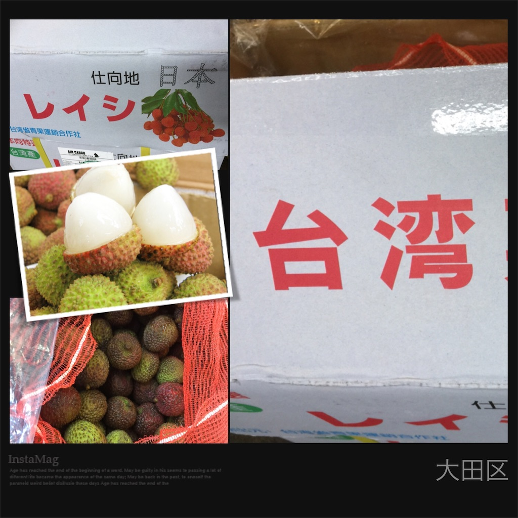 f:id:karin-matsugishi:20170610090346j:image