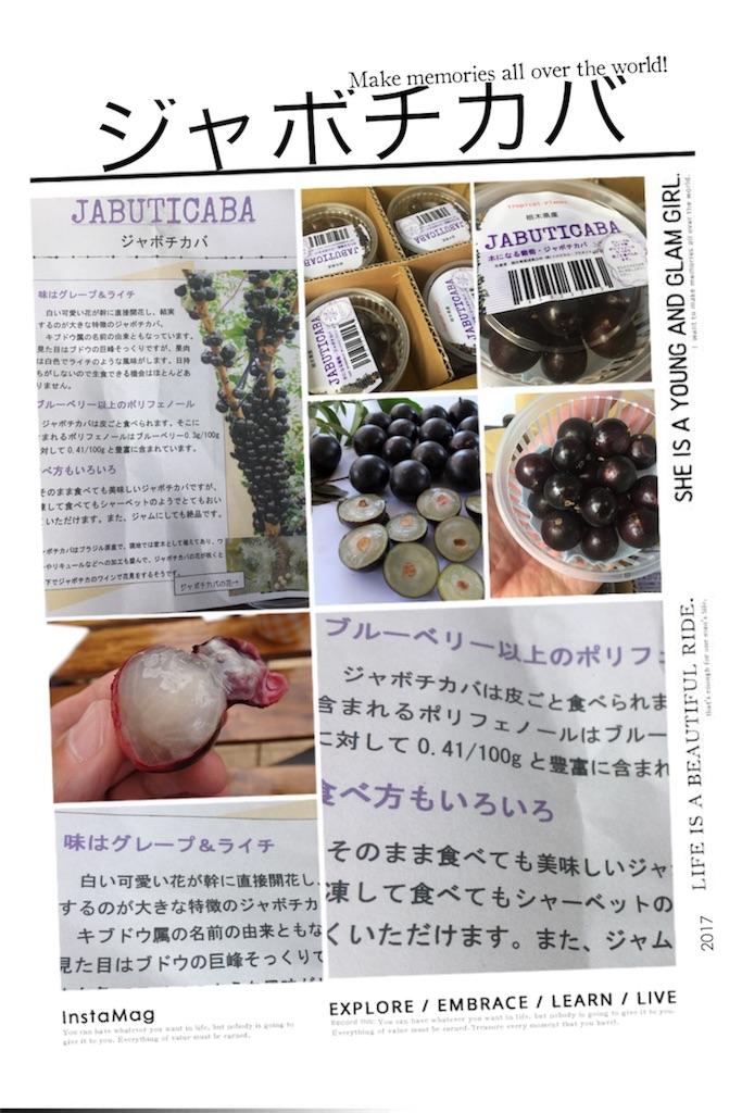 f:id:karin-matsugishi:20170615093144j:image