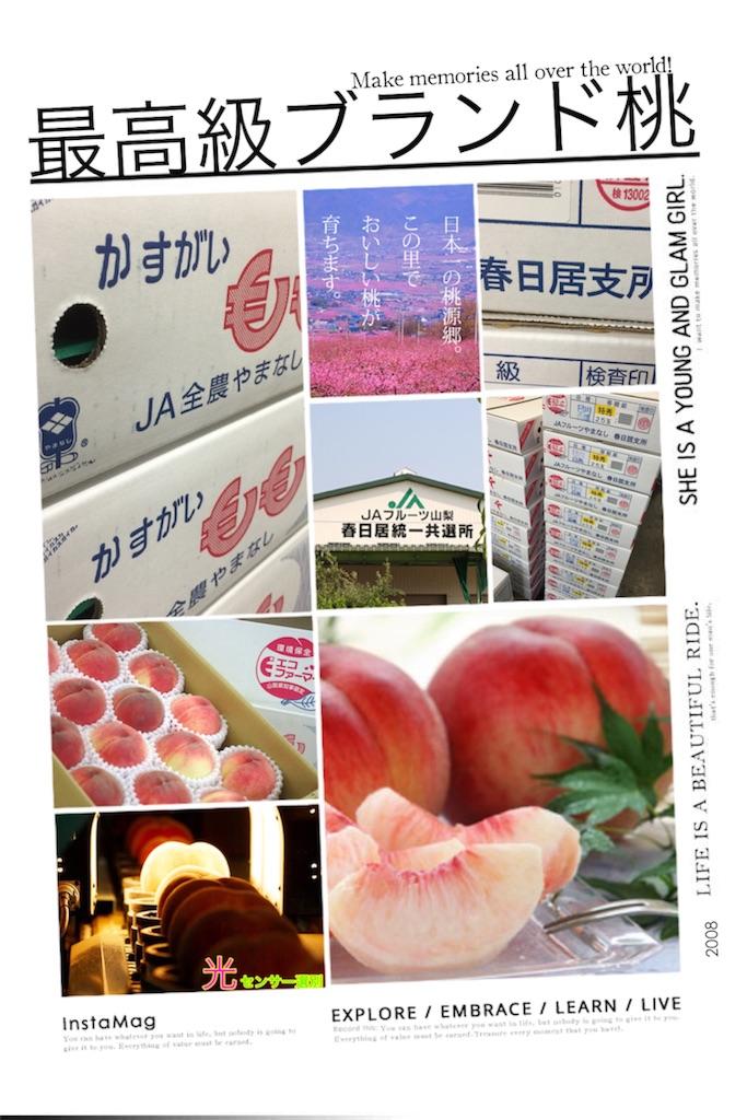 f:id:karin-matsugishi:20170629094502j:image