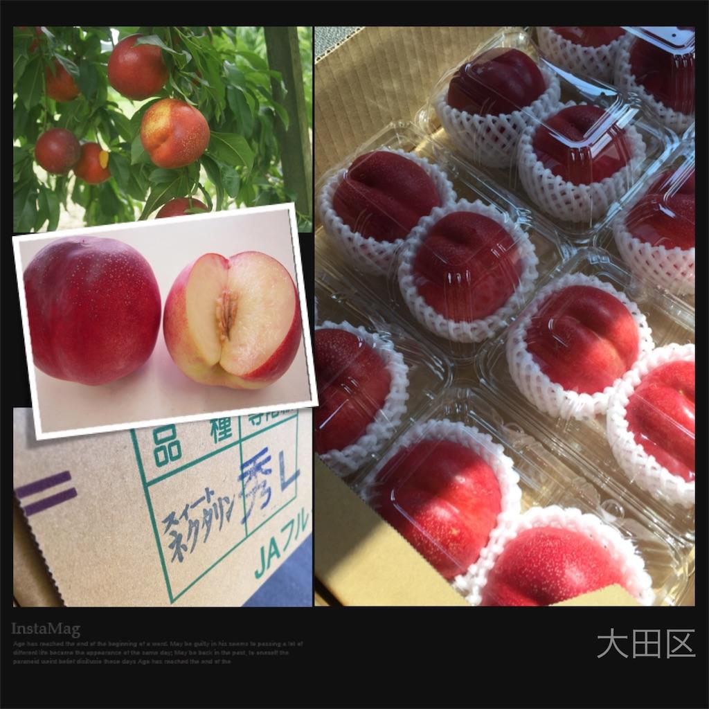 f:id:karin-matsugishi:20170707091713j:image