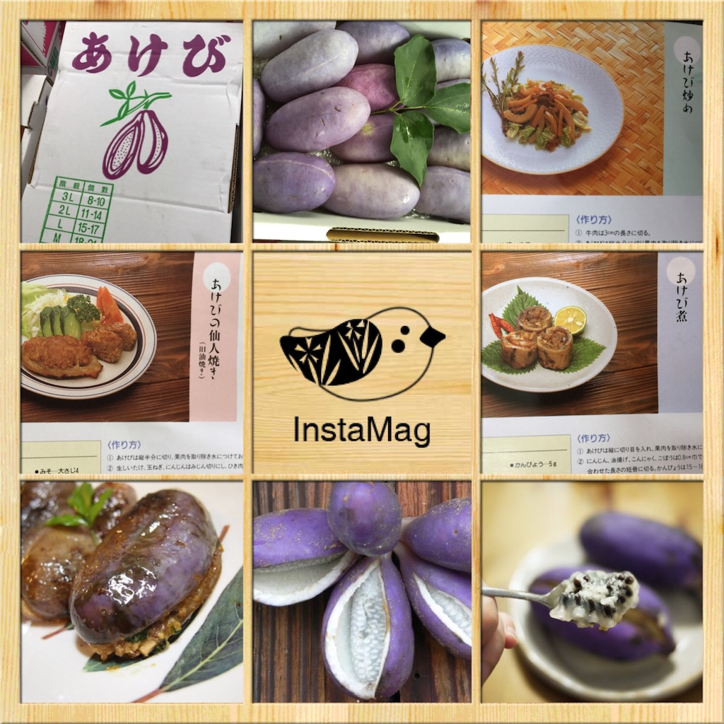 f:id:karin-matsugishi:20170828094659j:image