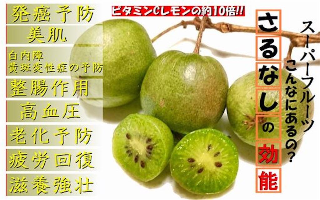 f:id:karin-matsugishi:20170904100805j:image