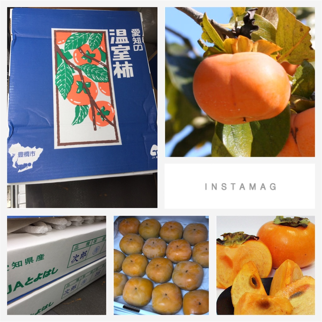 f:id:karin-matsugishi:20170908092921j:image