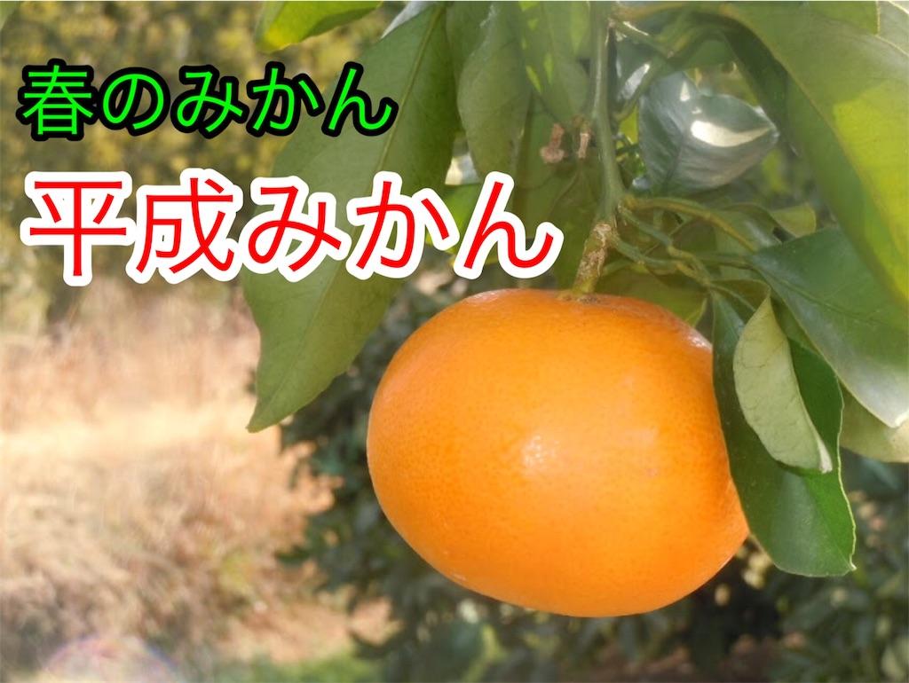 f:id:karin-matsugishi:20180402090502j:image