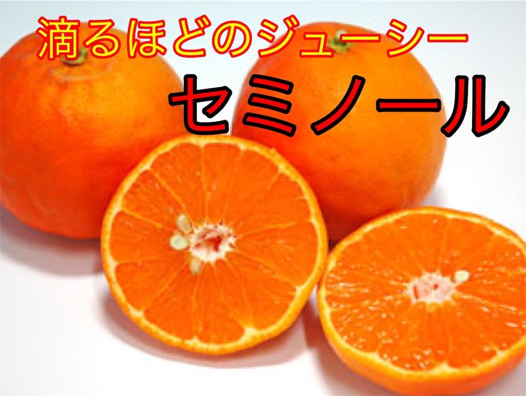 f:id:karin-matsugishi:20180402091839j:image