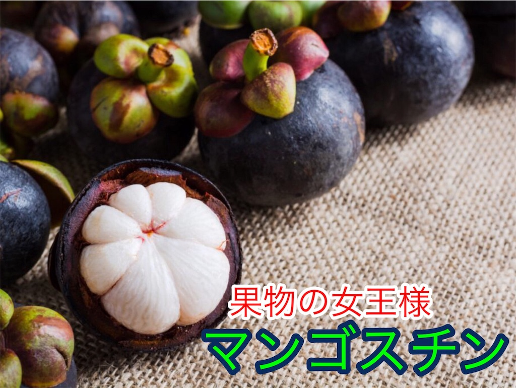 f:id:karin-matsugishi:20180402093237j:image
