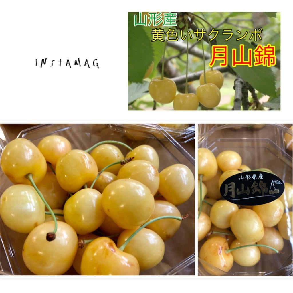 f:id:karin-matsugishi:20180621092809j:image