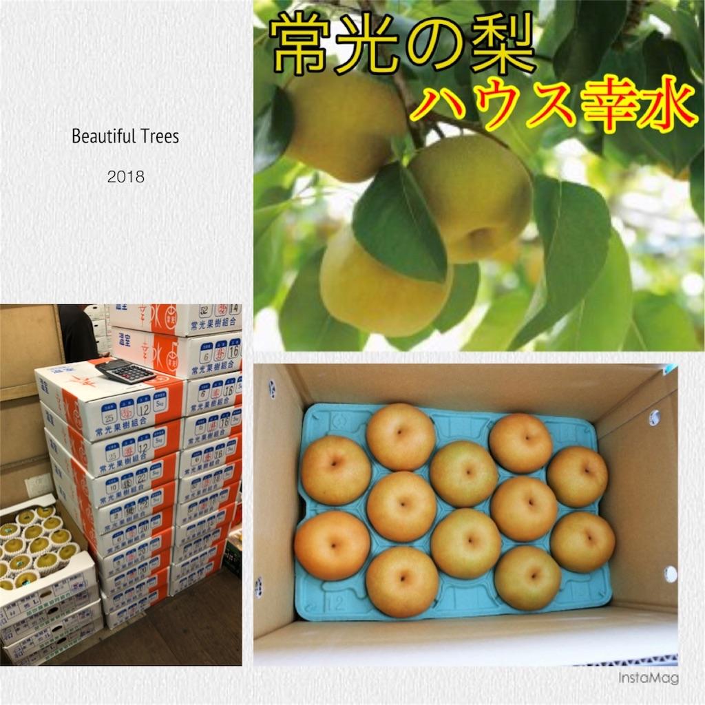 f:id:karin-matsugishi:20180621093904j:image