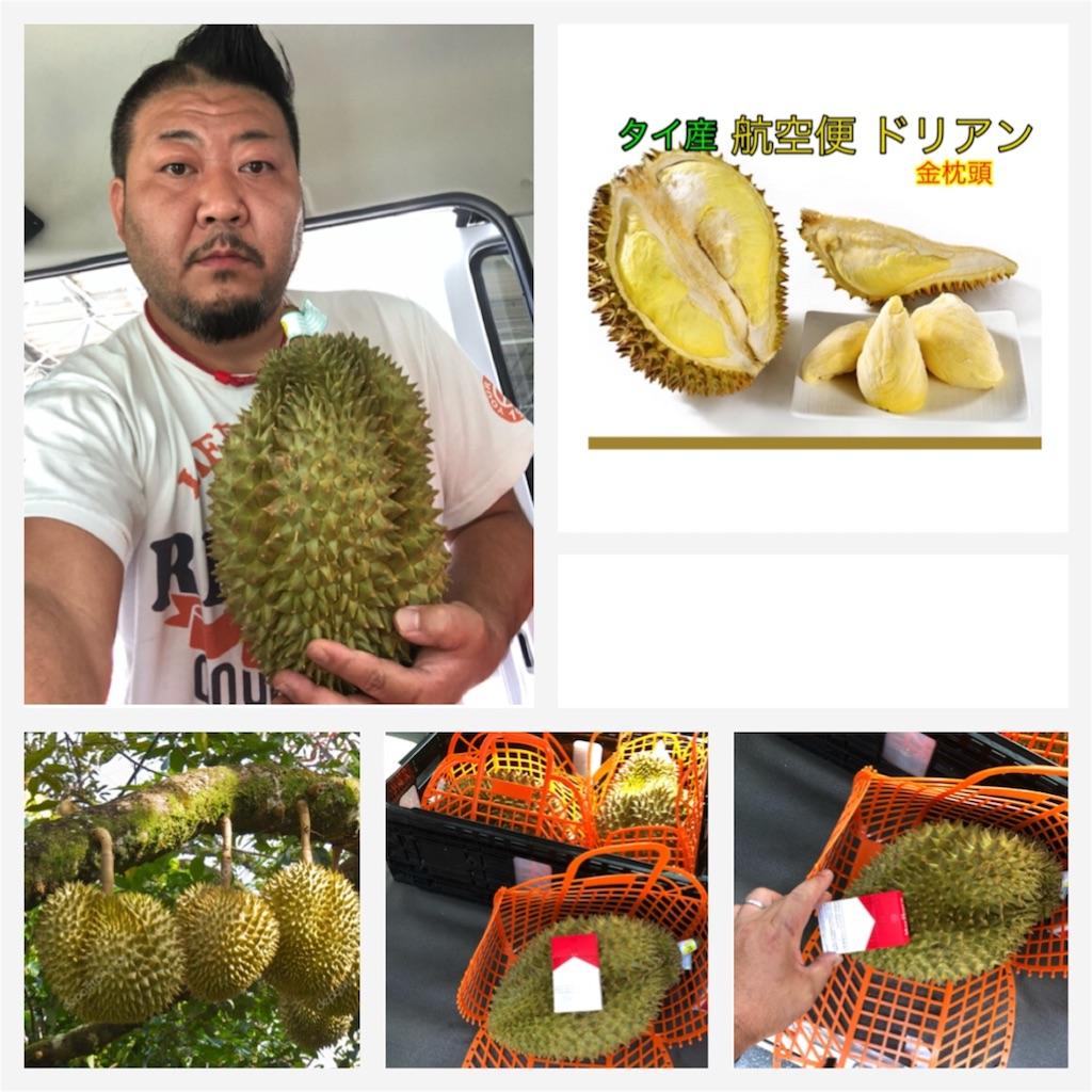 f:id:karin-matsugishi:20180726091740j:image