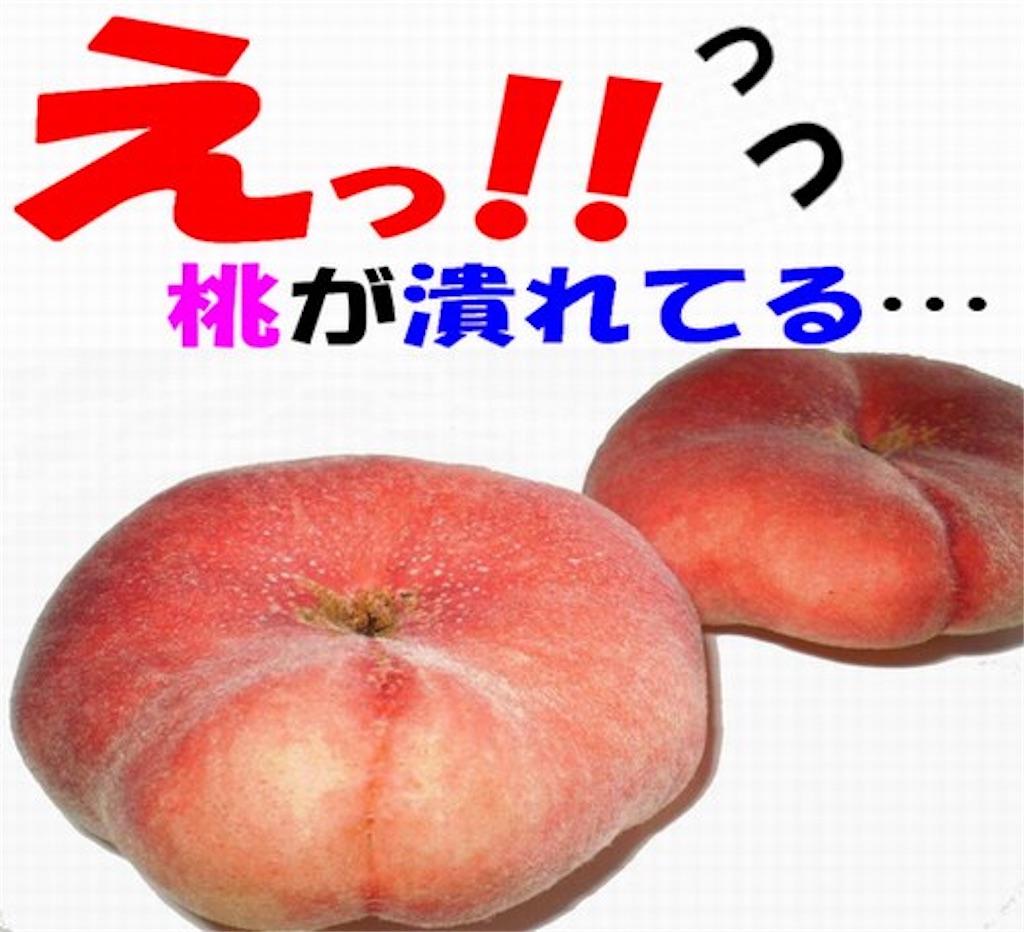 f:id:karin-matsugishi:20180802093613j:image
