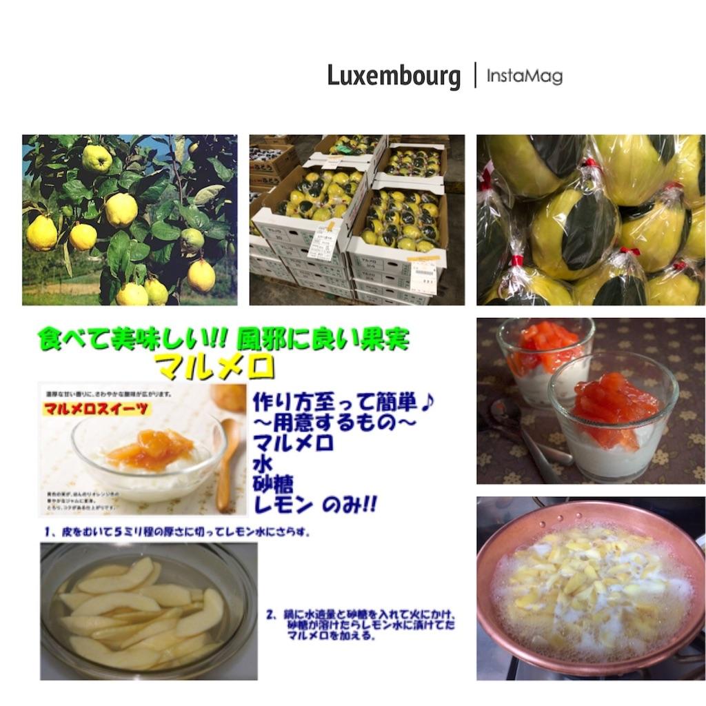 f:id:karin-matsugishi:20181010094619j:image