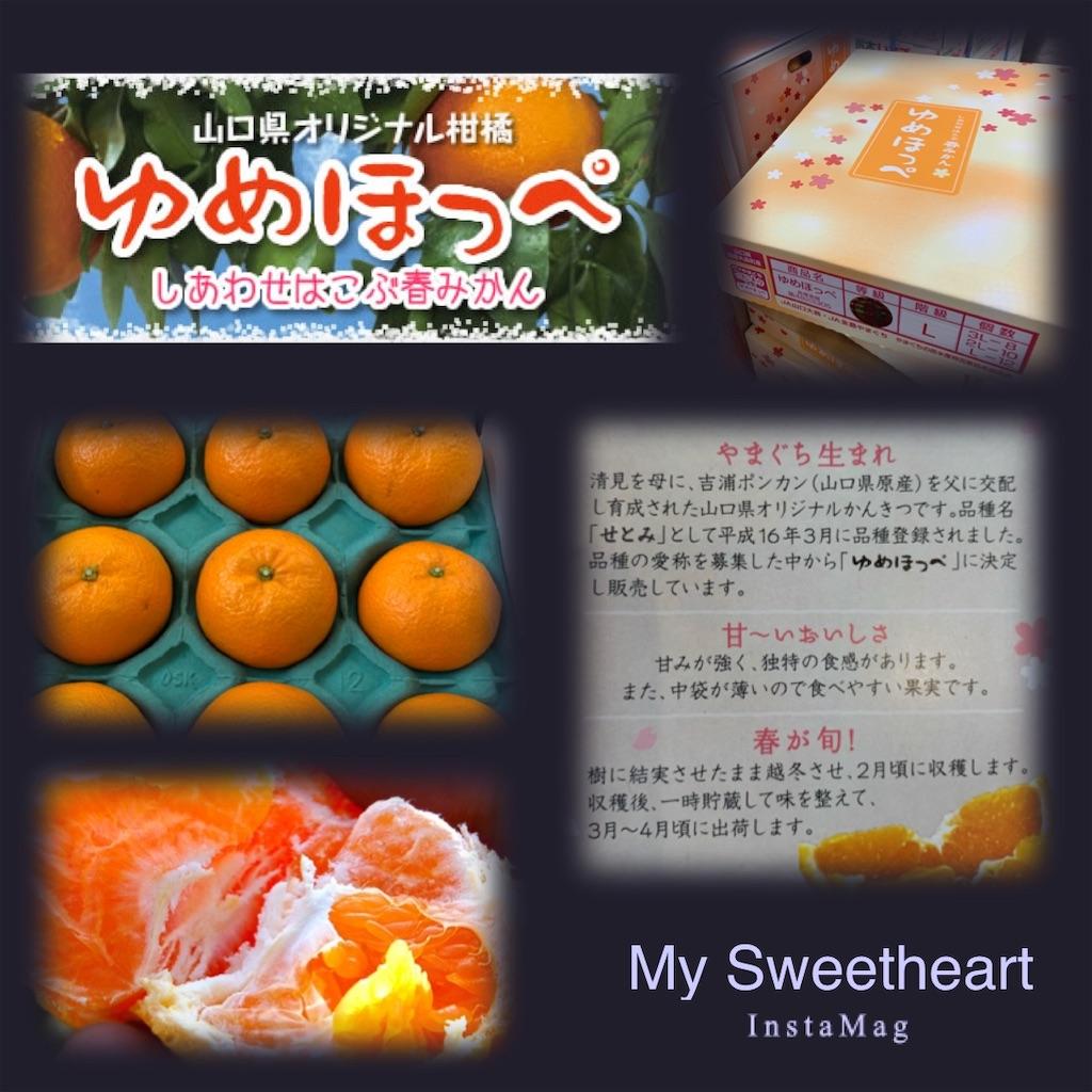 f:id:karin-matsugishi:20190312091127j:image