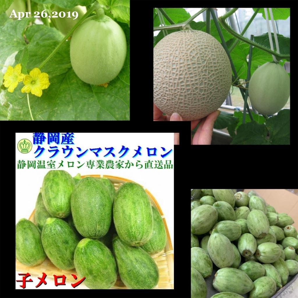 f:id:karin-matsugishi:20190426183810j:image