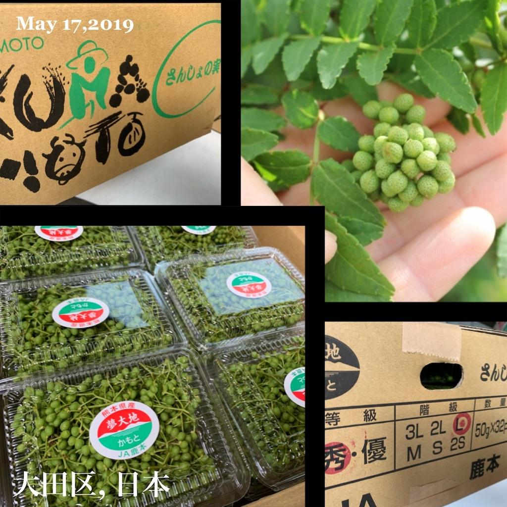 f:id:karin-matsugishi:20190517091922j:image