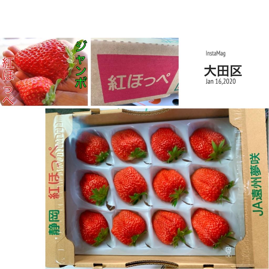 f:id:karin-matsugishi:20200116091108j:image