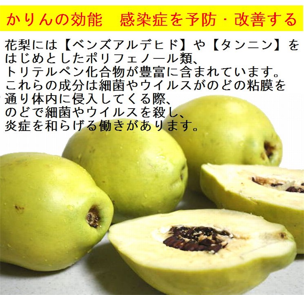f:id:karin-matsugishi:20201020114111j:image