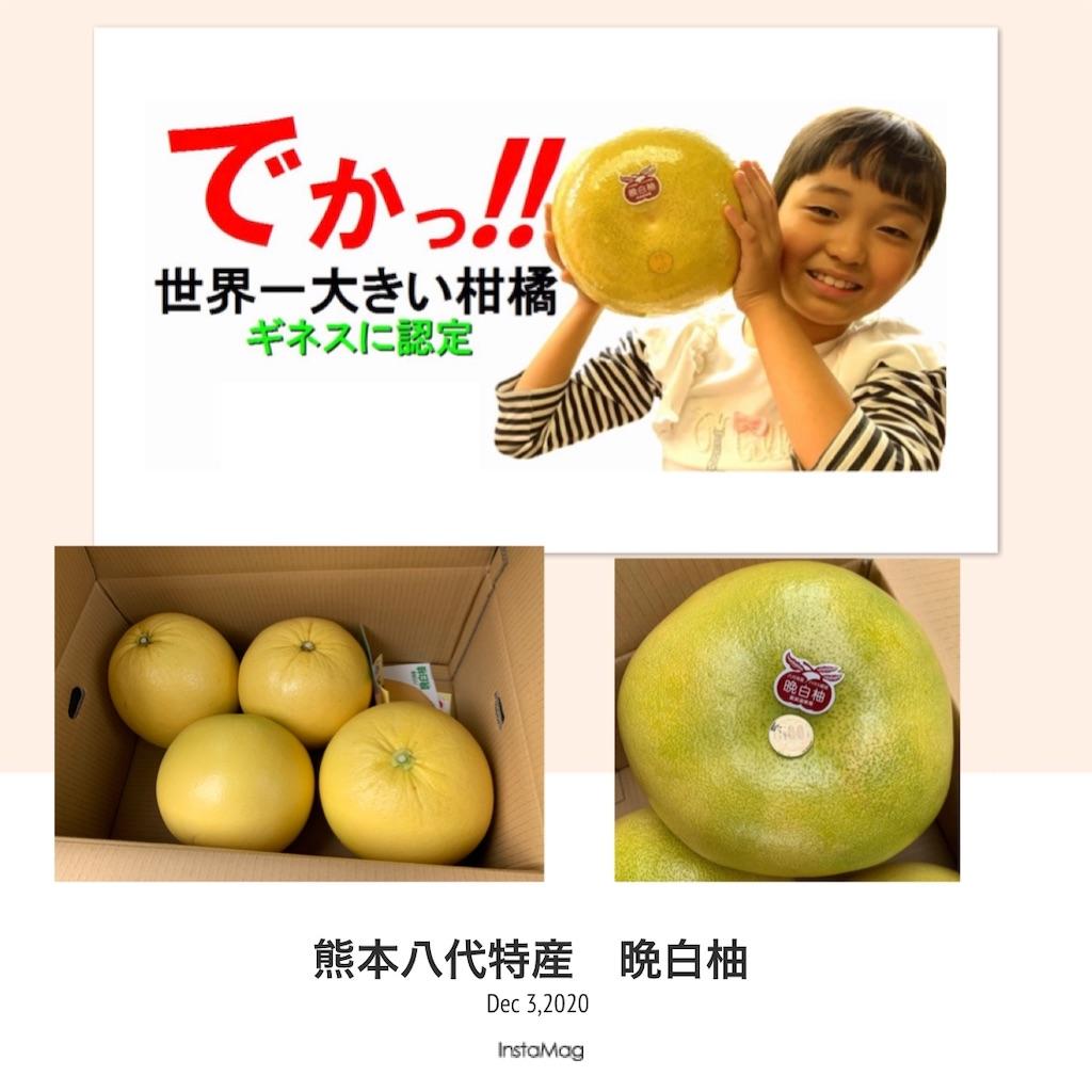 f:id:karin-matsugishi:20201203092744j:image