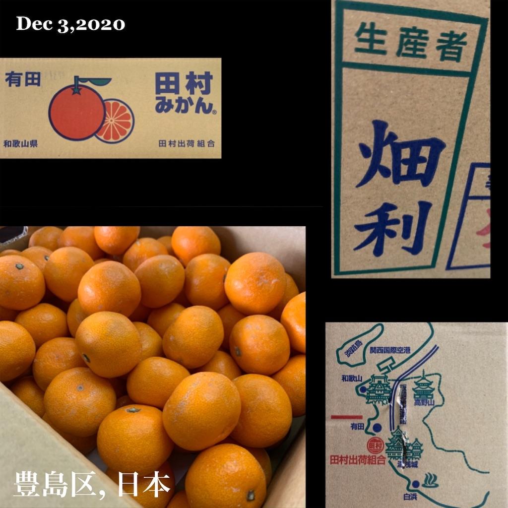 f:id:karin-matsugishi:20201218173421j:image