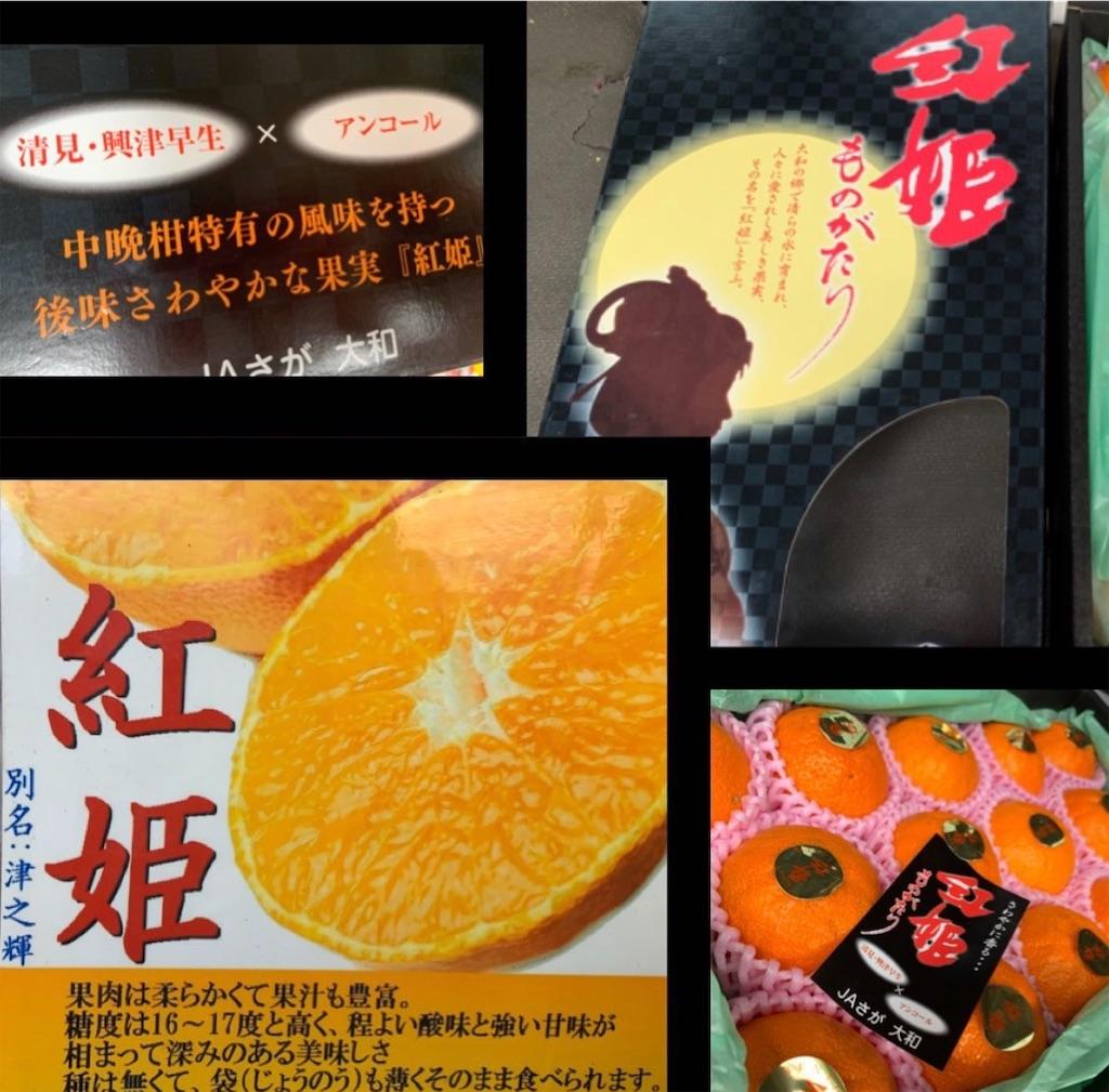 f:id:karin-matsugishi:20201218174240j:image