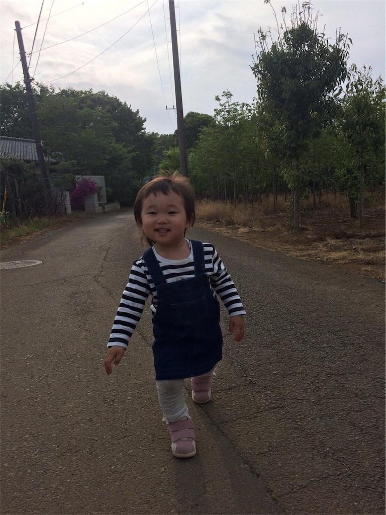 f:id:karisugi-biyoushi116:20170527201454j:image