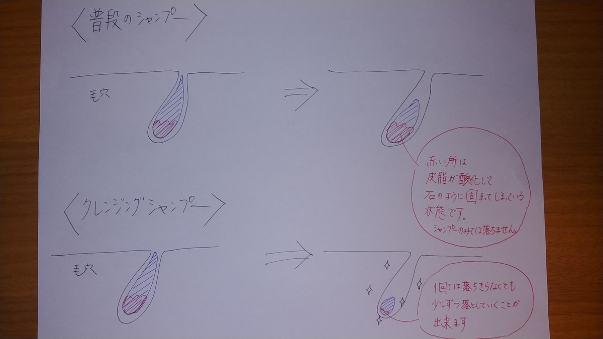 f:id:karisuman:20200514005811j:plain