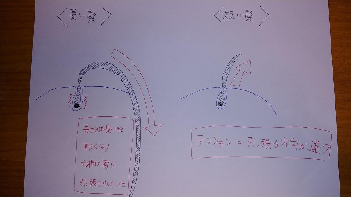 f:id:karisuman:20200615010106j:plain