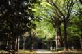 氷川神社(赤坂)その3