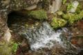 綺麗な水だ・・・ 琵琶湖から来てるはずだけど・・・