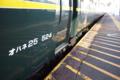 普通電車を待っていたら、反対側から豪華寝台特急が!