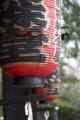 日本三文殊のひとつ、智恩寺ですぞ