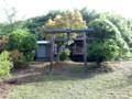 20110504080658