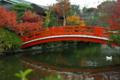 京都新聞写真コンテスト 「紅い橋」