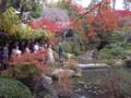 京都新聞写真コンテスト 「秋の法話」