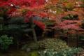 京都新聞写真コンテスト 「露地庭園」