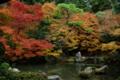 京都新聞写真コンテスト 「蓮華寺・庭園」