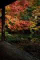 京都新聞写真コンテスト 「秋小寒の縁側」