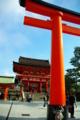 京都新聞写真コンテスト 「かくれんぼ」