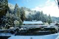 京都新聞写真コンテスト 「雪の朝」