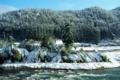 京都新聞写真コンテスト 「冬の瀬」