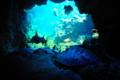 京都新聞写真コンテスト 「海底洞窟」