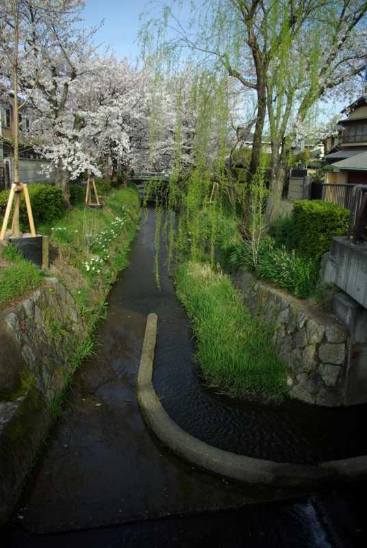 京都新聞写真コンテスト「風景の中のアール・デコ」
