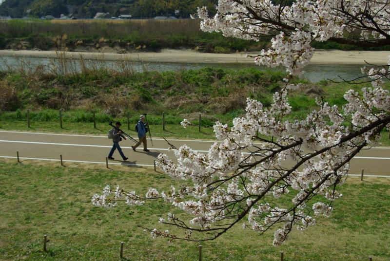 京都新聞写真コンテスト 「撮影日和」