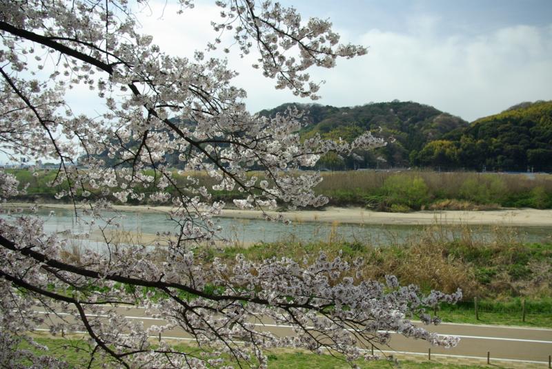 京都新聞写真コンテスト「木津の流れ」