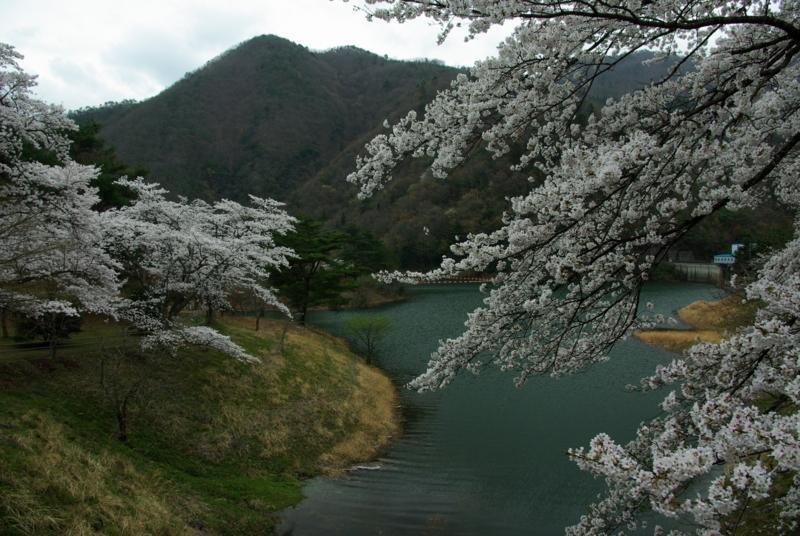 京都新聞写真コンテスト「虹の湖」