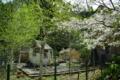 京都新聞写真コンテスト「おとぎ話・春の章」