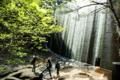 京都新聞写真コンテスト「マイナスイオン いっぱい」