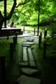 京都新聞写真コンテスト 「初夏の飛び石」