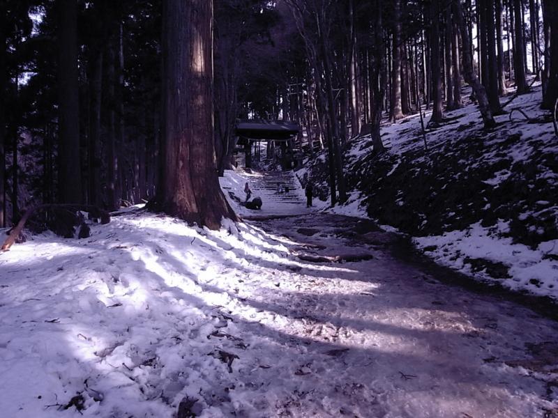 京都新聞写真コンテスト 「凍結」
