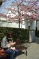 京都新聞写真コンテスト「あったか日より」