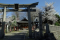 京都新聞写真コンテスト「春の宇賀神社」